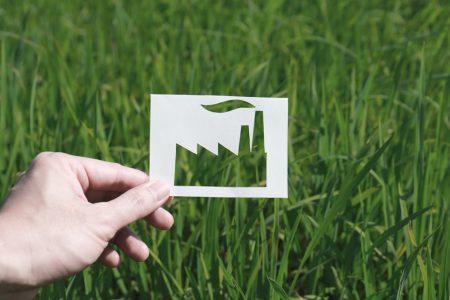 greenwashing zoldre mosas jelentese tipusai boritokep